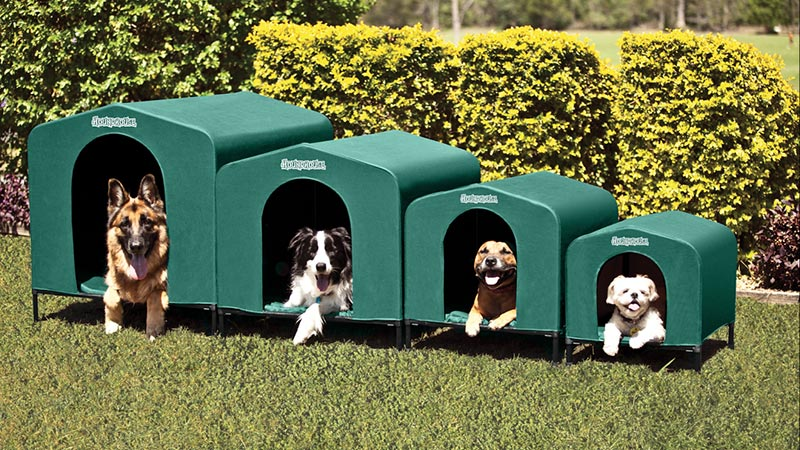 HoundHouse Green Kennels